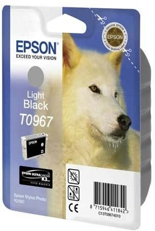 Epson T096 Light Black Cartridge - Retail Pack (untagged) for Epson Stylus Photo R2880 for Epson Stylus Photo R2880