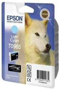 Epson T096 Light Cyan Cartridge - Retail Pack (untagged) for Epson Stylus Photo R2880